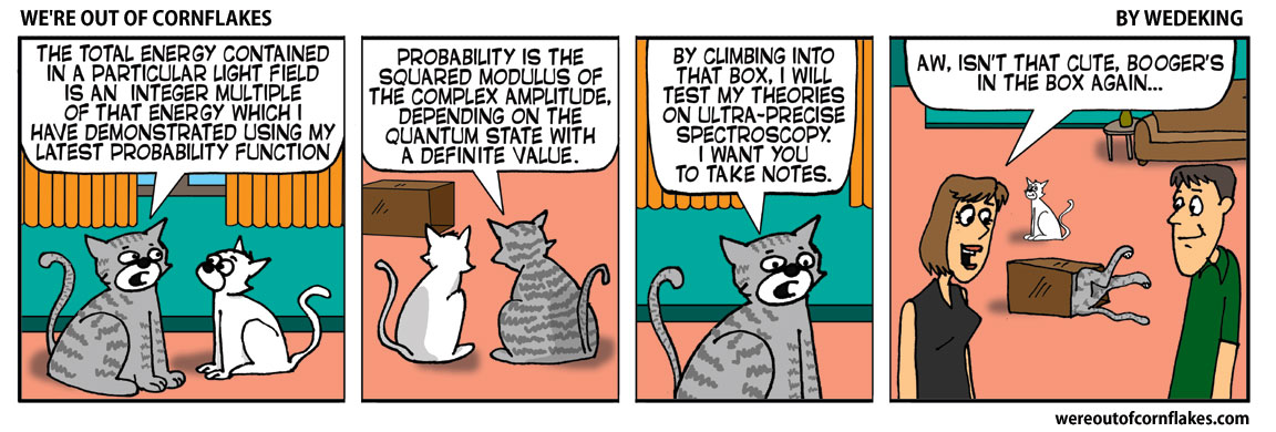 Bad cats science experiment