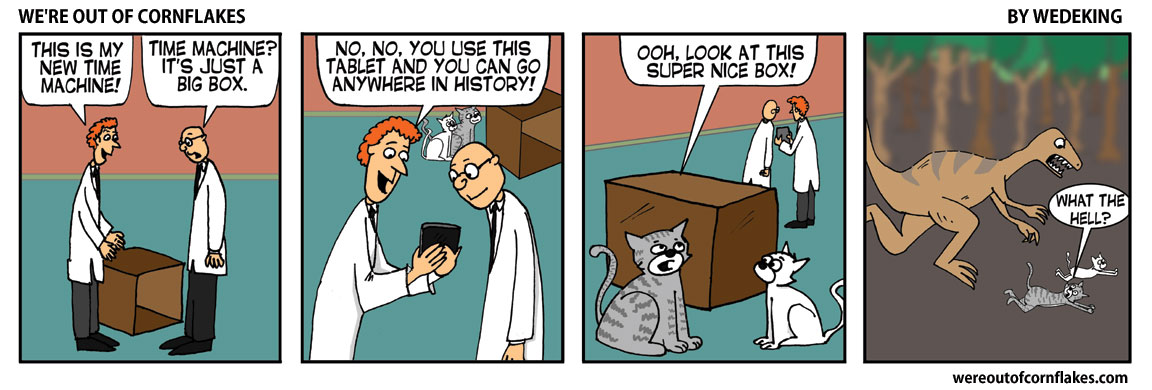 Bad cats find a box