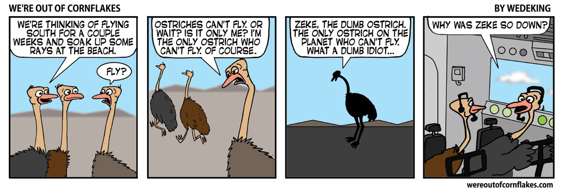 Ostriches can fly
