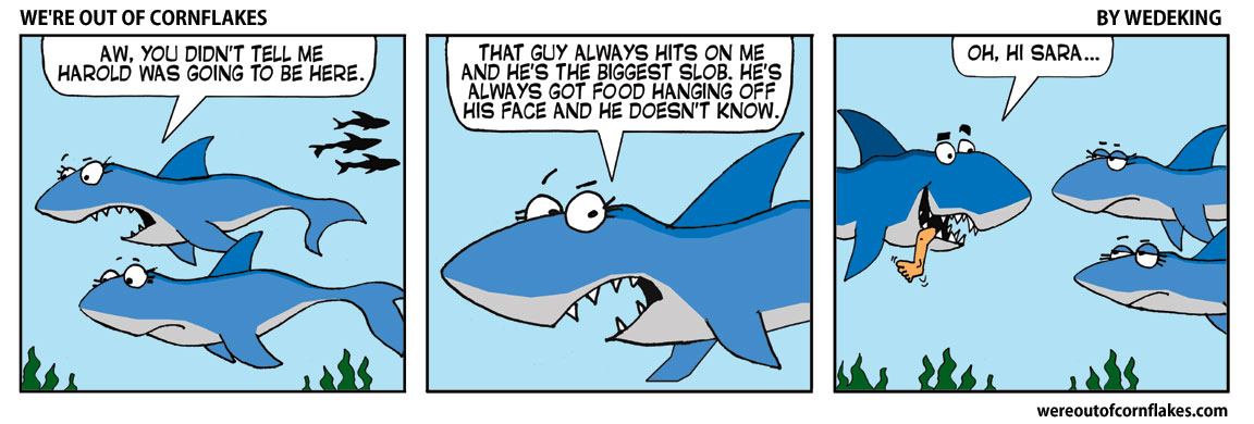 At the shark party